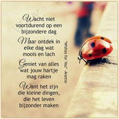 prachtige wijsheid......