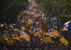 """Catalogne: une foule rouge et or réclame un référendum sur l'indépendance - fr.news.yahoo.com, Patrick RAHIR, Daniel BOSQUE. """"Dans une forêt de drapeaux rouge et or, des centaines de milliers de nationalistes ont manifesté jeudi à Barcelone pour réclamer le droit de se prononcer par un vote sur l'avenir de la Catalogne dans l'Espagne, à l'instar de l'Ecosse. Le gouvernement espagnol refuse tout référendum régional d'autodétermination."""""""