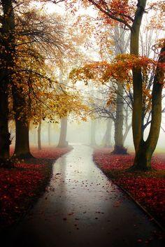 ,Autumn - my favorite season