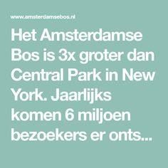 Het Amsterdamse Bos is 3x groter dan Central Park in New York. Jaarlijks komen 6 miljoen bezoekers er ontspannen, sporten of een evenement bezoeken.