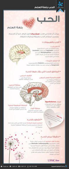 الباحثون السوريون - الحب بلغة العلم