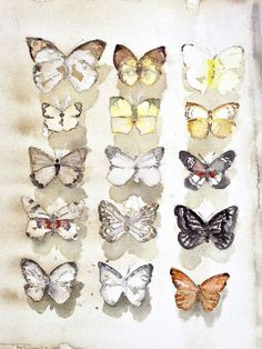 Be still my beating heart. would have loved this. By watercolor wizard Lars Lerins. Butterfly Watercolor, Watercolor Animals, Watercolor Art, Winslow Homer, Pretty Pictures, Pretty Pics, Artist Painting, Dream Big, Art Boards