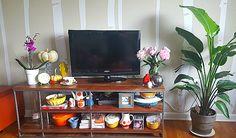Indoor Plants: Birds of Paradise. Big Plants, Indoor Plants, Condo Living, Love Flowers, Paradise, Birds, Magic, Club, Decor