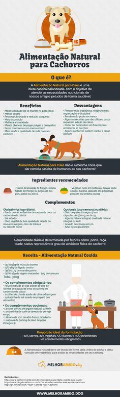 Infográfico Alimentação Saudável para cachorros #dog #puppy #cachorro #cão #pet #filhote #alimentaçãonatural