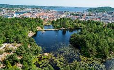 Kristiansand, Shock Wave, Bird Species, Travel Advice, Nice View, Trees To Plant, North West, Norway, Skiing