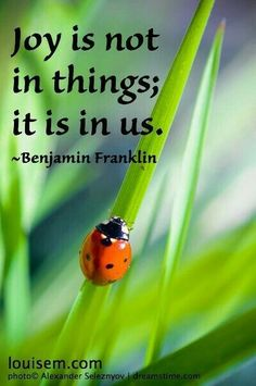 Joy Quotes, Quotable Quotes, Fearless Quotes, Happiness Quotes, Friend Quotes, Happy Quotes, Qoutes, How To Make Quotes, Ben Franklin Quotes