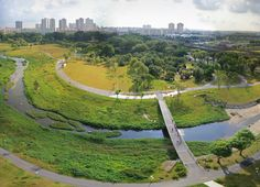 the Kallang River Bishan Park