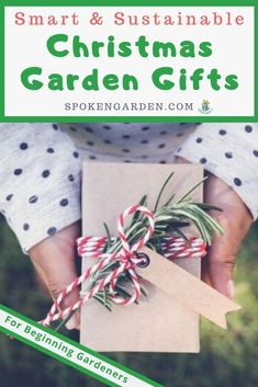 """"""""""" Christmas Garden Gifts That are Smart and Sustainable """""""" Shop for the perfect Christmas garden gift for the beginning gardener on your list. Our holiday gift guide features must-have tools, informative books, and more. Winter Plants, Winter Flowers, Winter Trees, Winter Garden, Winter Container Gardening, Garden Crafts, Garden Tools, Garden Tool Organization, Christmas Garden"""