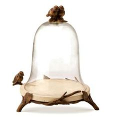 Glass bell cloche with twigs and birds Glass Boxes, Glass Containers, The Bell Jar, Bell Jars, Garden Cloche, Cloche Decor, Wired Glass, World Decor, Steampunk House