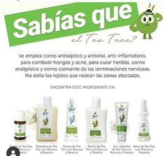 Tee Tree, Essential Oils, Personal Care, Feelings, Instagram, Wellness Products, Spas, Mary Kay, Facebook