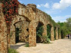 Lady Bird Johnson Wildflower Center-Austin-great place to take pictures, esp to put in new apartment spaces ;)