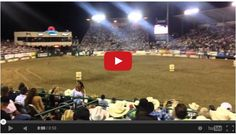 Barrel Racing Horse Vs. Dirt Bike - You Don't Want To Miss This!