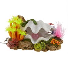 Top Fin® Colorful Clam LED Aquarium Ornament at PetSmart. Shop all fish ornaments online Fish Ornaments, Aquarium Ornaments, Aquarium Decorations, Colorful Plants, Colorful Fish, Wild Bird Food, Wild Birds, Happy St Patty's Day, Giant Clam Shell