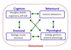 CBT Model - Cognitive Behavioral Therapy, is a type of therapy that focuses on the relationships and connections between our thoughts, feelings and actions. We are each affected by the environment in which we live. This environment involves both our current situations (family, friends, job, culture, various stressor and supports) as well as our past (our family history, past relationships, previous successes and failures). 4 elements of ourselves that interact with each other (model)
