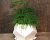 Geo planter - Large - White. $68.00, via Etsy.