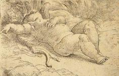 Parmigianino (Girolamo Francesco Maria Mazzola), Sleeping Cupid, About 1524–27.