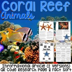 Antarctic Animals: Informational Article, QR Code Research Page & Fact Sort is a set of 6 informational articles about Antarctic Animals. These articles are full of interesting facts and details that students can use during reading and writing activities. Coral Reef Animals, Ocean Zones, Ocean Theme Crafts, Ocean Habitat, Ocean Projects, Animal Articles, Desert Animals, Rainforest Animals, Vocabulary Cards