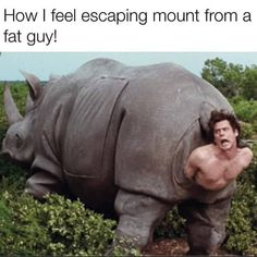 Ace Ventura pet detective-------oh Jim Carrey you never cease to amaze me! Funny Facebook Status, Facebook Timeline, Jim Carrey, Ace Ventura Pet Detective, Laughing So Hard, I Laughed, Laughter, Funny Pictures, Funniest Pictures