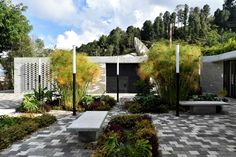 Image 13 of 40 from gallery of Raíces Educational Park / Taller Piloto Arquitectos. Photograph by Juan Manuel Bernal Arias Landscape Architecture, Landscape Design, Hard Landscaping Ideas, Facade, Sidewalk, Patio, Gallery, Photograph, Outdoor Decor