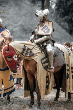 knight in shining suit epub vk