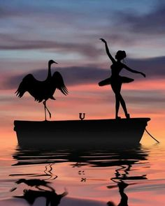 Passionately Curious // Beautiful Silhouette Photography by Dominic Liam ( Dancer Photography, Amazing Photography, Nature Photography, Silhouette Fotografie, Ballerina Kunst, Silhouette Photography, Silhouette Painting, Shadow Art, Dance Pictures