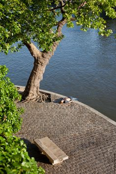A perfect place to spend a good time by the water.   Picture taken by Mohamed Khalil  http://jeudepaumehotel.com/ile-saint-louis/
