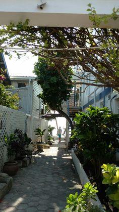 San Pedro, Ambergris Caye, Belize 2-28-17