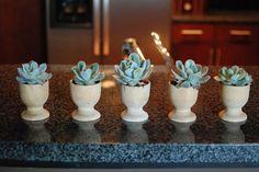 http://www.popsugar.com/home/DIY-Succulent-Wedding-Favors-Egg-Cups-21874186