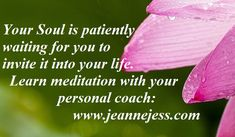I am here to uplift all those who are looking for the healing of their heart and their Soul. Spiritual Path, Spiritual Awakening, Deepest Gratitude, Learn To Meditate, Spiritual Teachers, Self Healing, Online Coaching, Holistic Healing, Helping People