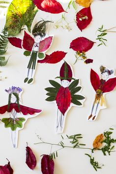UKKONOOA: Syyspuuhaa / Autumn Nature Crafts