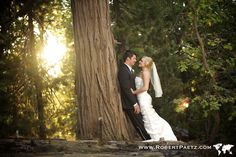 pine rose weddings | Big, Bear, Arrowhead, Pine, Rose, Cabins, Wedding, Los Angeles, Orange  http://www.pinerose.com/weddings/