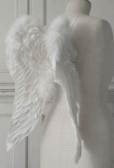 Angel Wings love it!!!!