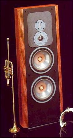 Infinity RS-IIIb. Used to own these.  Great speakers.