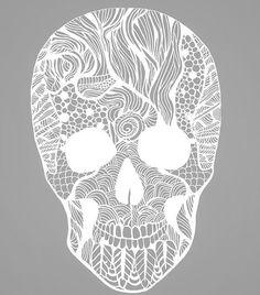 Cavidade Nasal, Vertebrados, Esqueletos, Crânios, Morte, Planos De Fundo 0cd529bda6