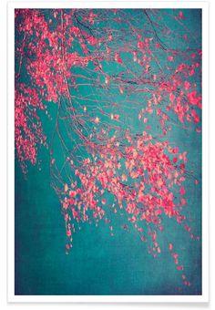 Tolle und ausgefallene Bilder . Whispers Of Pink als Premium Poster von Ingrid Beddoes | JUNIQE