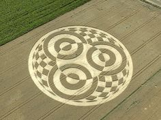 Crop Circle at Ammersee (Lake Ammer), Bavaria, Germany, Reported 18th July 2014 - photo by Martina Huemer
