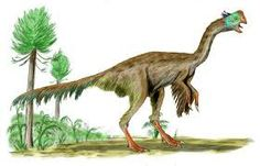 dinosaur pictures - Google Search