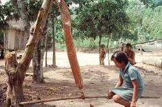 Cassava water extraction (photo: C Hershey)