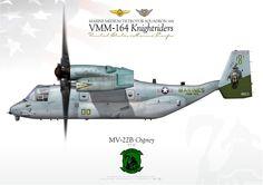 "UNITED STATES MARINE CORPS Marine Medium Tiltrotor Squadron 164 (VMM-164) ""Knightriders"" Camp Pendleton, CAArtwork by http://www.flygirlpainters.com/"