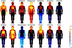 "Study Finds Emotions Can Be Mapped to the Body by Shannon Firth, usnews: ""Our data show bodily sensations associated with different emotions are so specific that, in fact, they could at least in theory contribute significantly to the conscious feeling of the corresponding emotion."" Dr. Antonio Damasio,  an expert in consciousness, said the study provided compelling evidence to support claims ""that the content of emotion is largely based on the perception of body states."" #Science  #Mind_Body"