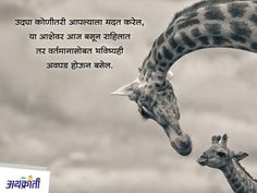Motivational Quotes For Life, Daily Quotes, Great Quotes, Life Quotes, Inspirational Quotes, Morning Thoughts, Good Thoughts Quotes, Marathi Quotes On Life, Marathi Status