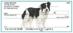 Border Collies  from Checks-SuperStore.com