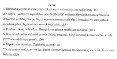 Fizyoloji -2 Vize Soruları