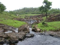Toranmal hill station is situated in the Satpura Range. Get complete travel guide of Toranmal hill station Maharashtra at maharashtraplanet.com at http://maharashtraplanet.com/hill-stations-in-maharashtra/toranmal/