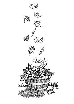 1000 images about coloriages dessins d 39 automne on - Coloriage feuille automne ...