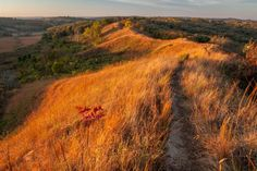 The 12 Most Underrated Places in Iowa that You Must Check Out