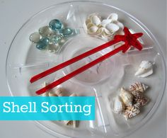 Shell Sorting. Fun summer sorting activity for kids. { It may still be winter but you can make it summer in your house! }