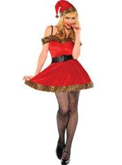 Fierce and Festive Costume