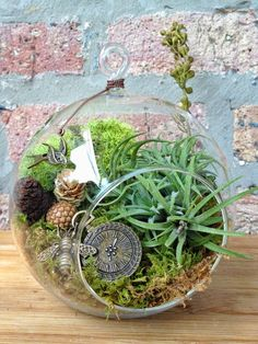 Steampunk Air Plant Terrarium #home #decor #plant www.loveitsomuch.com