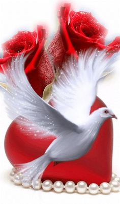 The perfect Bird Dove Roses Animated GIF for your conversation. Discover and Share the best GIFs on Tenor. Dove Images, Love Heart Images, Love You Images, Beautiful Love Pictures, Beautiful Gif, Beautiful Birds, Beautiful Flowers Wallpapers, Beautiful Rose Flowers, Heart Wallpaper